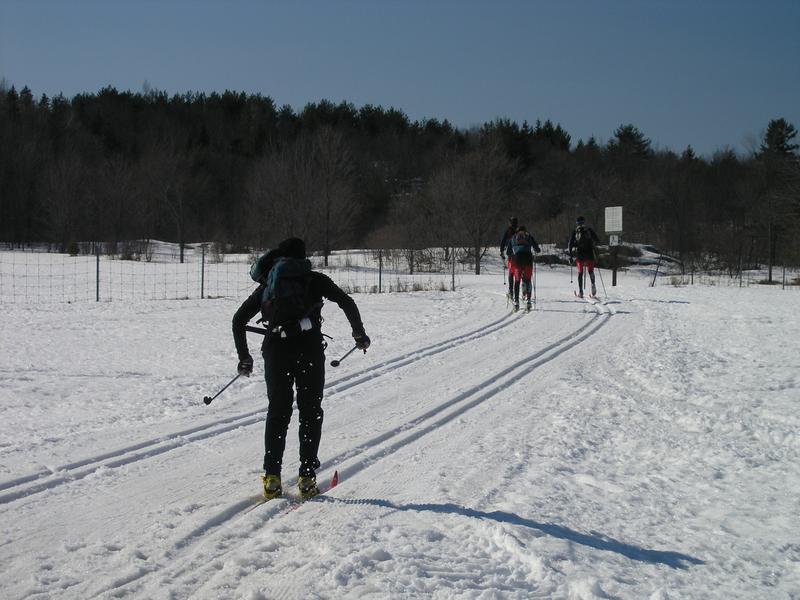 Skiing13