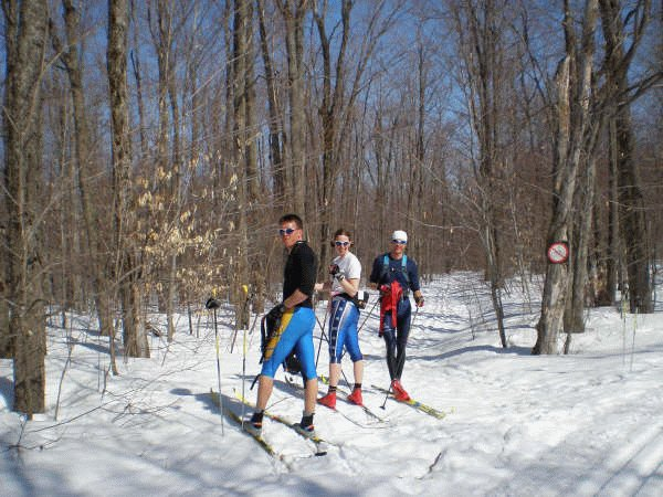 cross country skiing in gatineau park