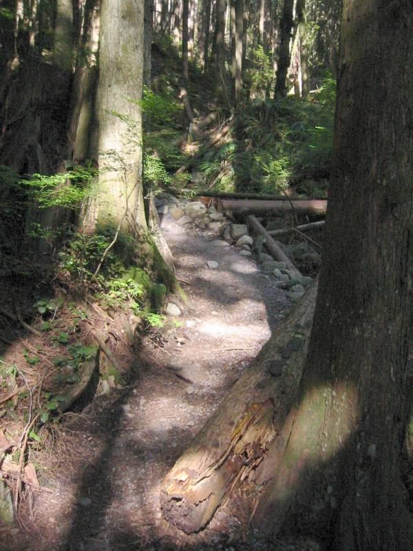 baden powell trail