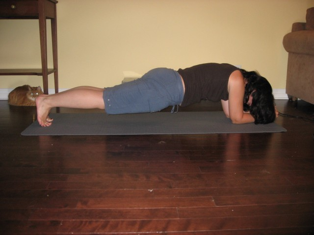 Core Strength Exercise Plank
