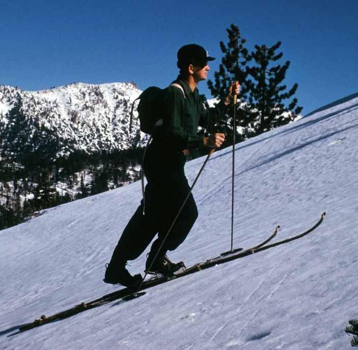 nordic ski skins
