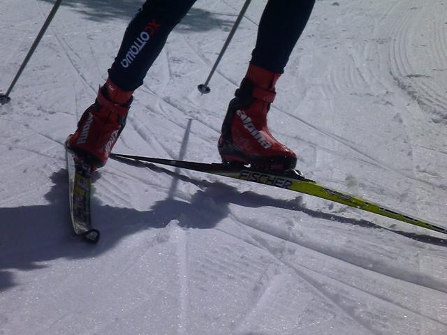 Equipment Review Alpina ESK Pro Skate Boots Ski XCOttawaca - Alpina xc ski boots
